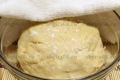 8. Тесто выкладывают в промасленную изнутри форму, накрывают салфеткой и ставят в теплое место на 2-2,5 часа.